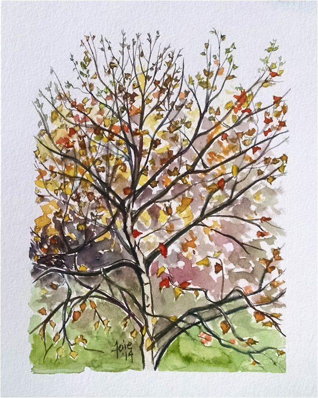 """FALL CALLIGRATREE"" - 8x10"" Original Watercolor Painting"