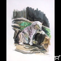 Thumbnail of Polar Bear